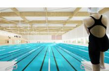 Dėl pinigų baseinui – aistros