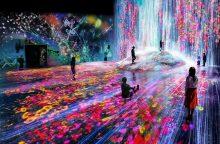 """""""teamLab"""": meno pasaulis be sienų"""