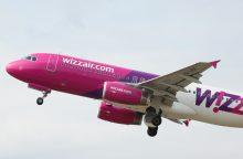 """Oficialu: """"Wizz Air"""" stabdo keliones penkiomis kryptimis"""