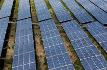 """Lietuvos investuotojai jungiasi prie Lenkijos saulės energetikos """"aukso karštinės"""""""
