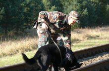 Tarnybiniai šunys rungsis narkotikų, sprogmenų bei ginklų paieškos čempionate