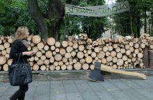Dėl brangstančių malkų ir biokuro socialdemokratai kelia klausimą premjerui