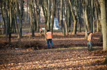 Parke užpulta sužvėrėjusių plėšikų auka neišgyveno