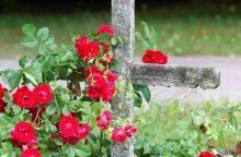 Embrionus galės laidoti kapinėse