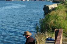 Malkų įlanka virsta statybų aikštele