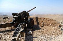 """Libano kariuomenė pradeda puolimą prieš """"Islamo valstybę"""" Sirijoje"""