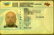 Suklastotą vairuotojo pažymėjimą pateikęs ukrainietis suimtas mėnesiui