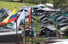 JT: Kolumbijos FARC sukilėlių nusiginklavimas baigtas