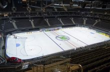 Pasaulio ledo ritulio čempionatui – papildomos 300 vietų