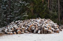Siekia lengvatinio PVM malkoms ir medienos produktams kūrenimui