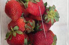 Panika Australijoje: vaisiuose vis dar randama adatų