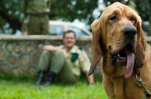 Šuo darbe – kai kur tai ne šventė, o norma