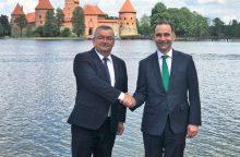 R. Masiulis: glaudus Lietuvos ir Lenkijos bendradarbiavimas svarbus visai Europai