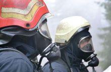 Molėtų rajone žaibas sudegino medinį namą, ugniagesių mašinos užklimpo