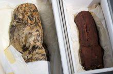 Meksika atgavo 3 tūkst. senumo olmekų skulptūras