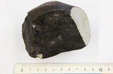 Nyderlandų mokslininkai švenčia reto meteorito atradimą