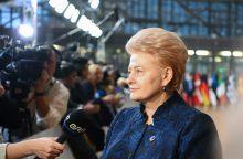 D. Grybauskaitė: Ukrainai reikia daugiau užsispyrimo vykdant reformas