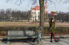 Kova lygioje vietoje: nesutariama dėl paminklo Lukiškių aikštėje