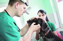 Kaune atidaroma visą parą veikianti veterinarijos klinika