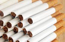 Sodyboje Klaipėdos rajone rasta nelegalių cigarečių