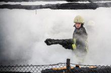 Aiškėja daugiau gaisro detalių: vyro gyvybę nusinešė ne ugnis